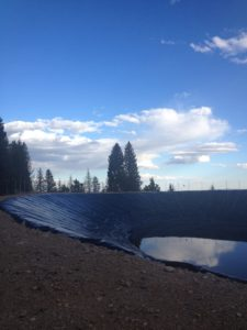 Pajarito's holding pond as of yesterday evening.