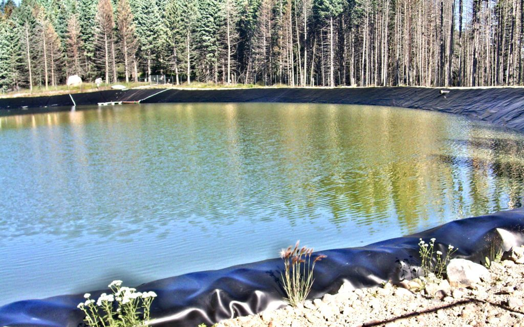 Pajarito's holding pond as of August 5, 2015.