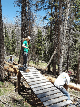 Volunteers working on the new elevated ladder bridge.